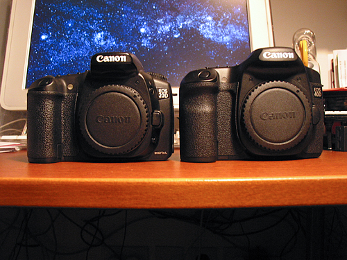 Canon EOS 40D Review | The World According to Roland