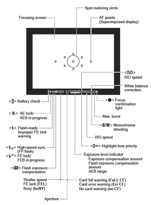 5d-viewfiner